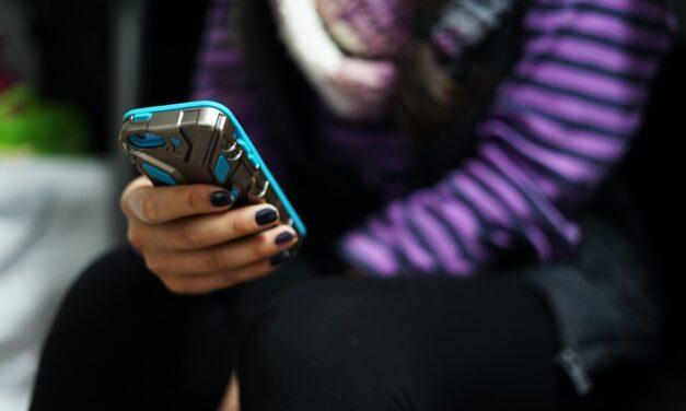 Izrada smjernica: Kako se zaštititi od elektroničkog seksualnog nasilja